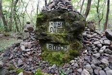 登顶汉拿山 - 济州岛另类自虐之旅