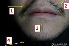 干湿两用,贴面舒适——博朗3系 3040s电动剃须刀评测体验 (一周多长胡须实战体验篇