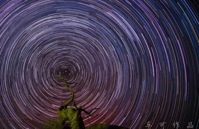 摄影作品额济纳旗《千年胡杨》背后的故事及星空拍摄教程