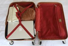 一只胖嘟嘟的行李箱