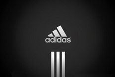阿迪达斯 (adidas) TERREX SWIFT R MID GTX W山地越野超轻防水鞋-体验报告 ...